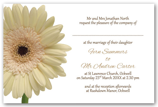 White Gerbera invitation postcard