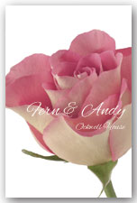 Dusky Pink Rose Invitation