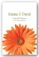 Orange Gerbera Invitation