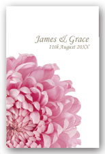 Pink Chysthemum Invitation
