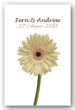 White Gerbera Invitation